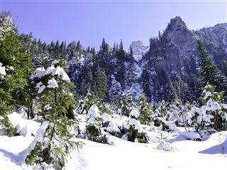 7 nights 8 days shimla manali adventure deal by train